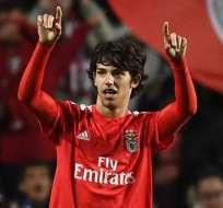 Joao Felix, joven figura del Benfica.