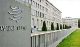 OMC elige a Ecuador como presidente del Comité de Comercio y Desarrollo. Foto: Referencial