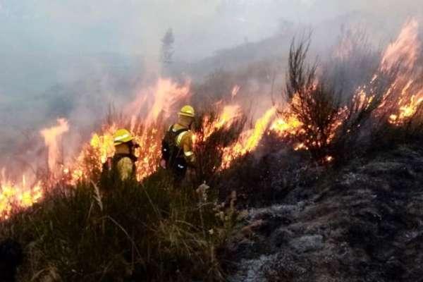 Bomberos controlan incendio en el cerro Ilaló, en Quito