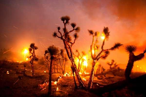 Vientos empujan incendios hacia zona desértica en California