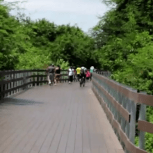 Guayaquil y la isla Santay se conectan a través de un puente donde se tienen la opción de transitar caminando o en bicicleta.
