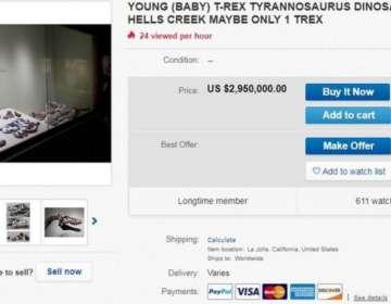 El fósil se vende en la plataforma eBay por casi tres millones de dólares.