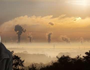Cuando la solución para el planeta se halla bajo tierra. Foto: Pixabay