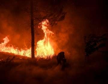 Hace dos años, 100 personas murieron por incendios en la región del centro del país. Foto: AFP