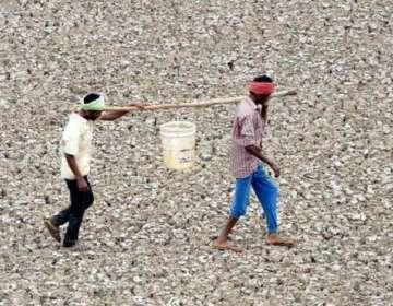 Casi un tercio de la población global, cerca de 2.600 millones de personas, vive en países en situación de estrés hídrico.