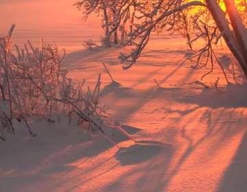 Los investigadores encontraron más de 10.000 partículas de plástico por litro de nieve.