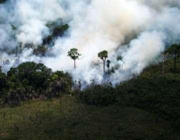 Entre enero y el pasado 19 de agosto se han registrado 72.843 focos de incendios forestales en Brasil. Foto: AFP