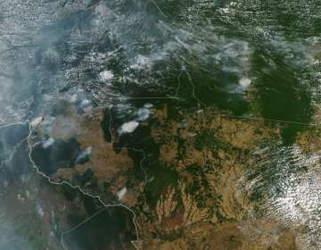 Incendios forestales en Brasil aumentan 83 % este 2019. Foto: AFP
