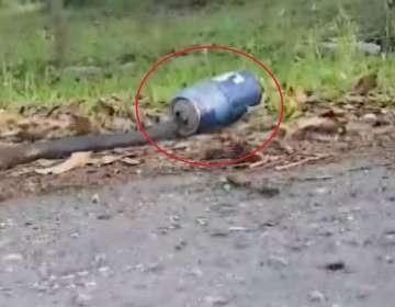 Se pone en riesgo para rescatar a una serpiente atrapada