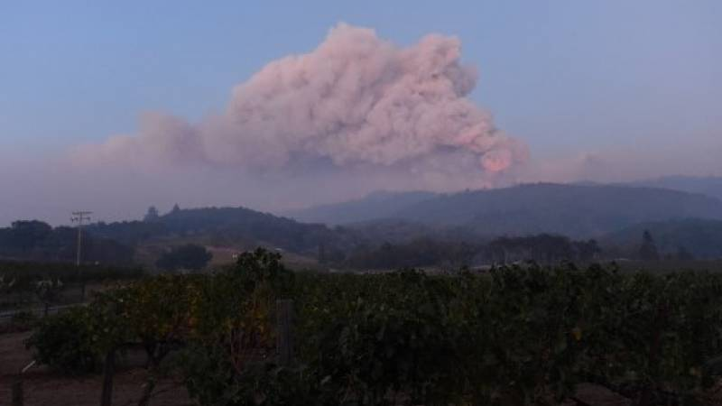 Una pluma de humo se desborda sobre Napa en California